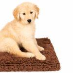 dgs dirty dog cushion pad hundemadrass