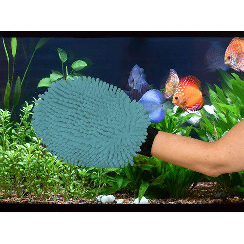 DGS akvariehanske